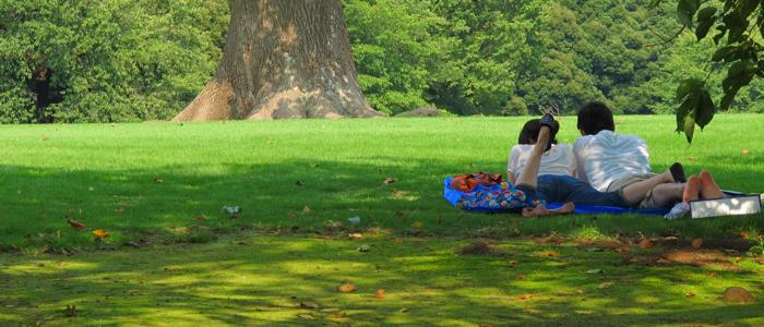 公園のカップル